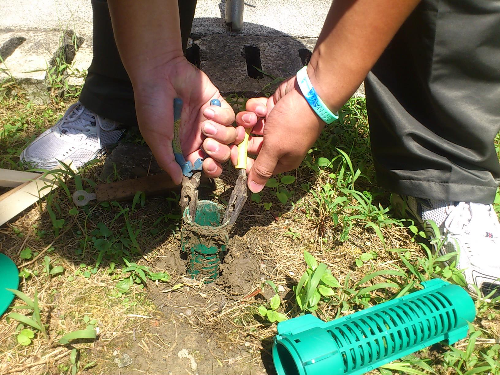 地下型捕蟻站毀損,更置新品。