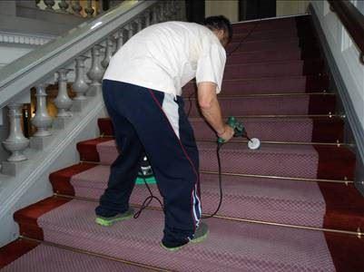 古蹟區M型樓梯地毯細部清潔。